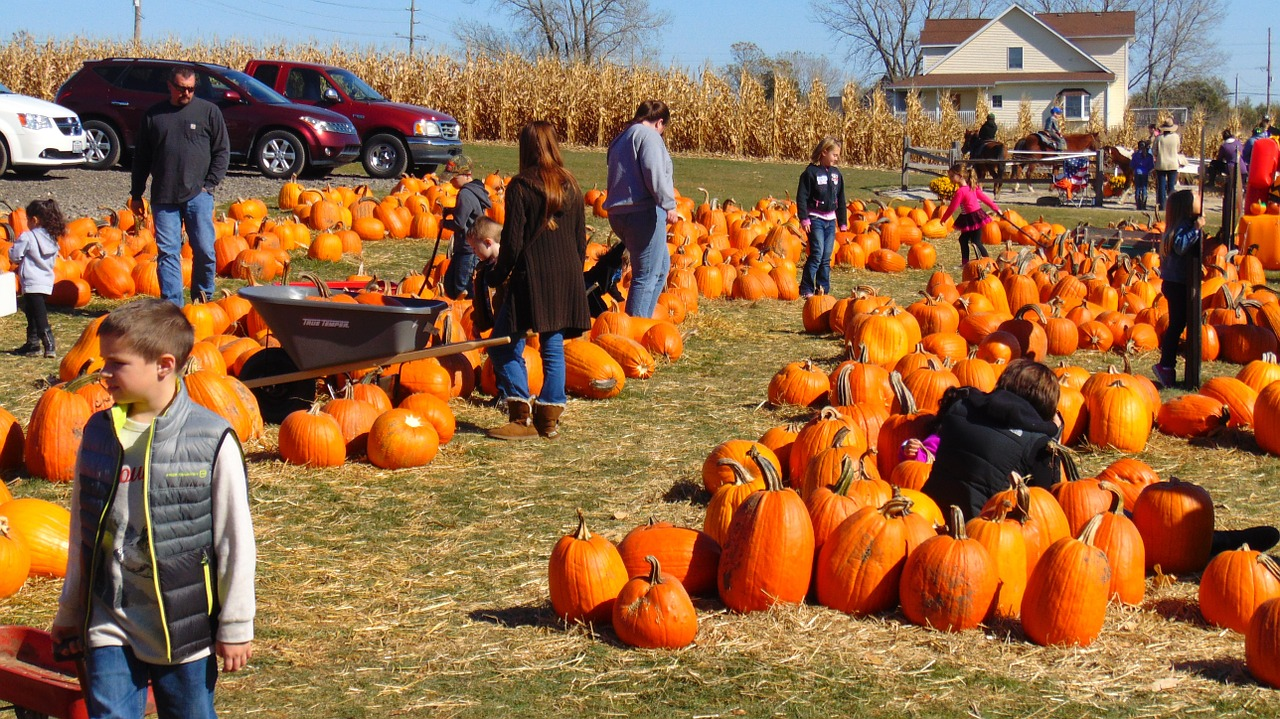 4 West Michigan Fall Time Events Port Pediatric Dentistry