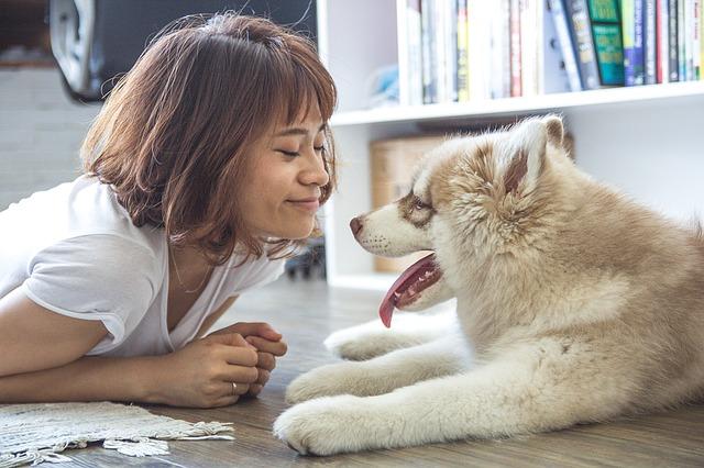 Bad pet breath