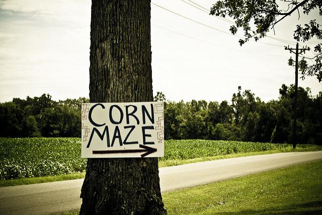 Corn Maze in West Michigan