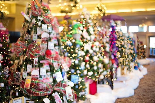 Holland & GR December Events